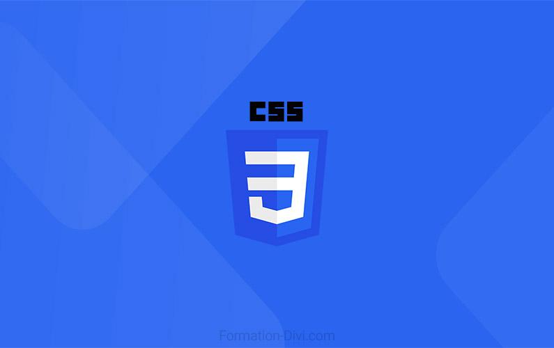 Ajouter ou modifier du CSS personnalisé dans Divi