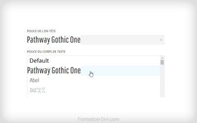 Divi : ajouter police de caractère/typo/Google Font