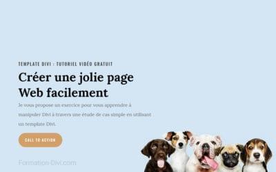 Vidéo : comment utiliser les templates du thème Divi avec WordPress